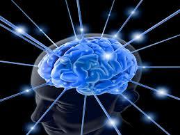 www.epilepsiaonline.net